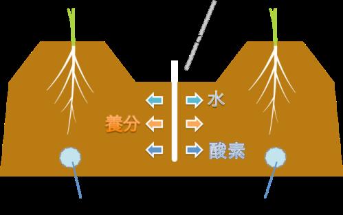 土壌針の説明