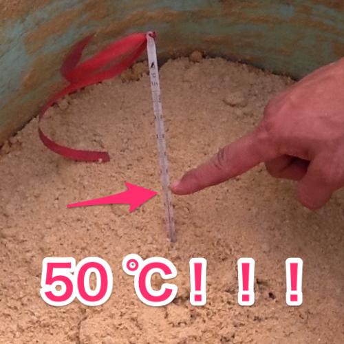 納豆菌米ぬかボカシ 50℃